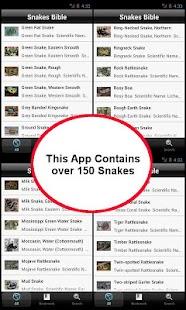 玩教育App|Snakes Bible免費|APP試玩