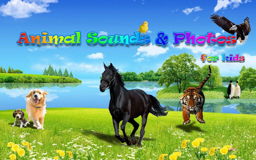 Animal Sounds&Photos for Kids 1.5 screenshots 14