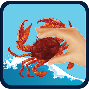 Download crab fishing apk to pc download android apk for Crab fishing game