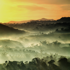 Early Morning by Henry Adam - Landscapes Mountains & Hills (  )