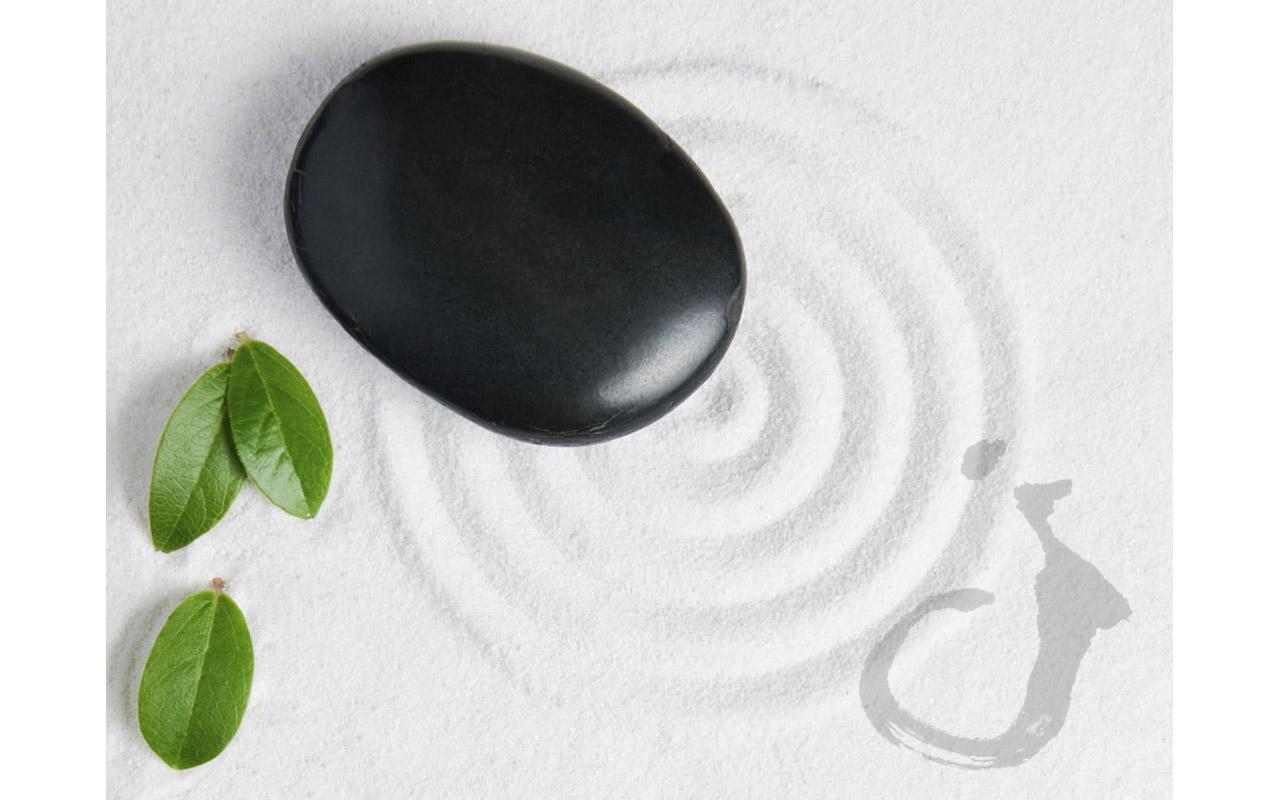 Zen Basics- screenshot