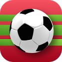 Crazy Soccer Ball Kicks icon