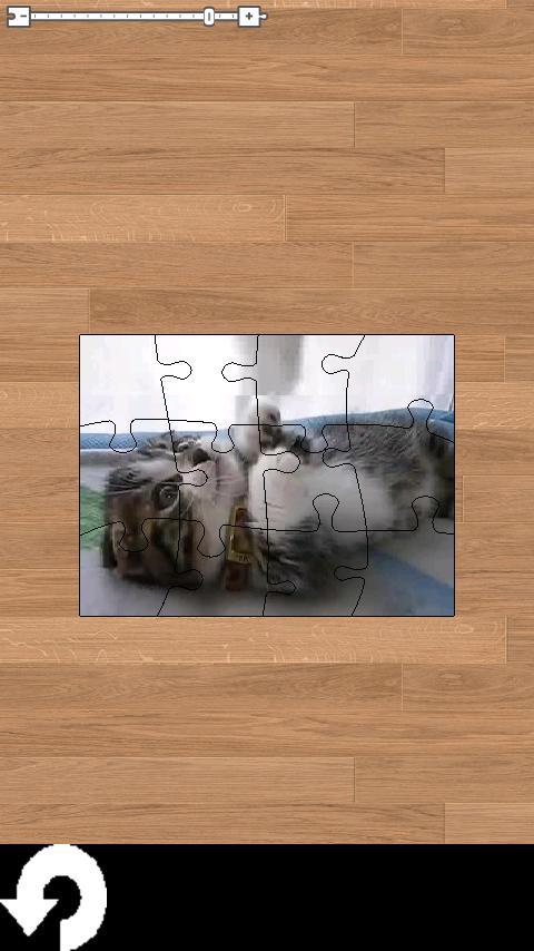 لغز لطيف القطط فيديو! لعبة- screenshot