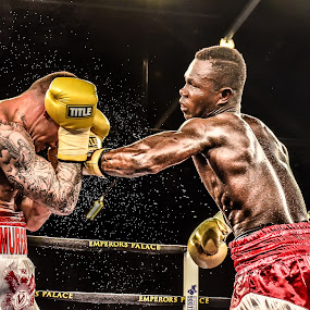 Martin Murray vs Ishmael Thete by Alexius van der Westhuizen - Sports & Fitness Boxing ( pride, guts, martin murray, emperor's palace, boxing, sweet science, and glory )