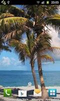 Screenshot of Beach Trees Live Wallpaper