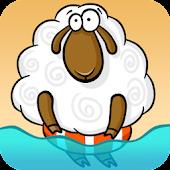 Sheep Rapids