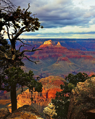 Canyon & Tree near sunset by Jim Ackermann - Novices Only Landscapes ( color efex pro, tree, sunset, grand canyon )