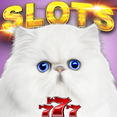 Casino Cash Cats Kitty Slots