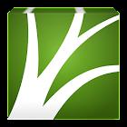 CovLife icon