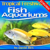 Tropical Fish Aquariums Pv