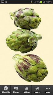 Cooking Artichokes - screenshot thumbnail