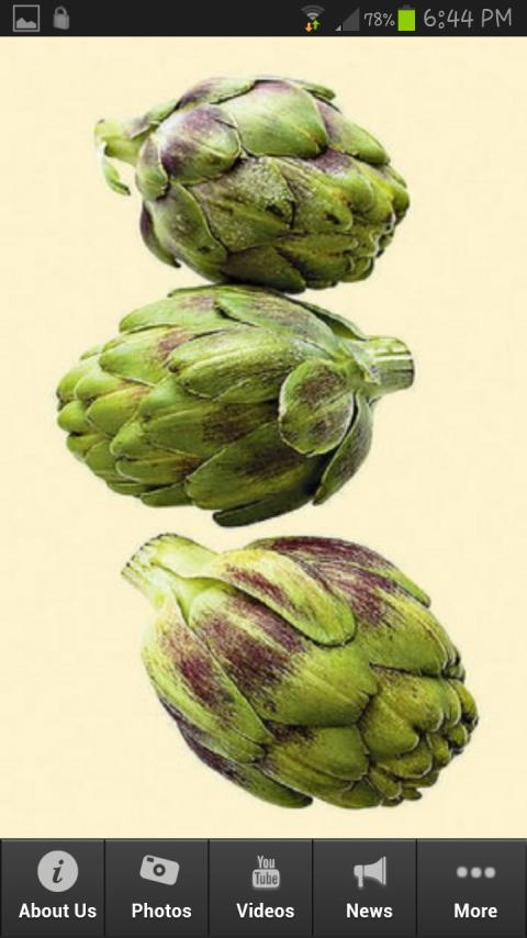 Cooking Artichokes - screenshot