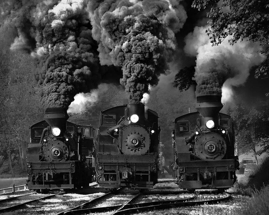 Train Race in BW by Chuck  Gordon  - Black & White Objects & Still Life ( cass, railroad, shay, rail, bw, three, train, smoke, steam )