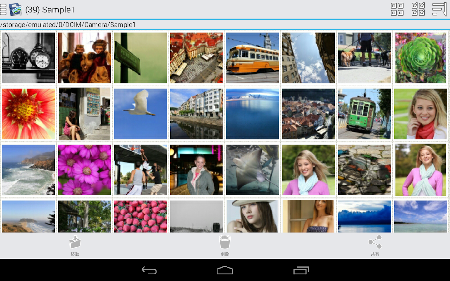 Photo Organizer Ad-Free - screenshot