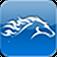 Alltech World Equestrian Games