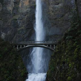 Multnomah Falls by Rob & Zet Sample - Buildings & Architecture Bridges & Suspended Structures