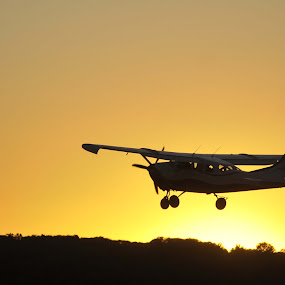 Last Run by Martin Wheeler - Transportation Airplanes ( skydiving, plane, airplane, sunset, silhoutte,  )