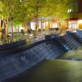 The Plaza by Roy Walter - City,  Street & Park  Street Scenes ( water fountain, park, night, street scenes, city )