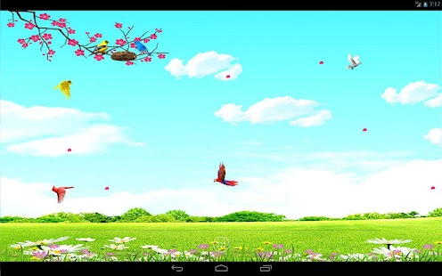 Sky Birds Live Wallpaper Free- screenshot thumbnail