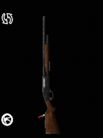 Screenshot of Shotgun of The Walking Dead