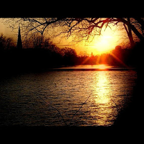 Watching the Sunset by Christine Morningstar - Nature Up Close Water