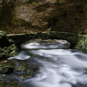 Rakov Škocjan by Branko Frelih - Nature Up Close Water (  )