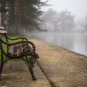 Na jezeru by Branislav Rupar - Artistic Objects Other Objects ( water, bench, grass, trees, lake, forest, morning, walk )