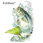 FishMate icon