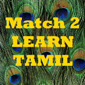 Match2Learn Tamil