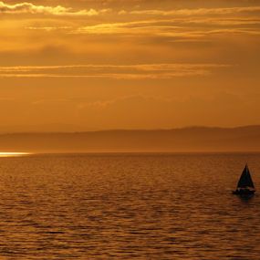 Sail on Summer Sun by Nicola Graham - Transportation Boats ( firth of forth, scotland, sailboats, landscapes, Free, Freedom, Inspire, Inspiring, Inspirational, Places, People, Emotion, water, device, transportation )