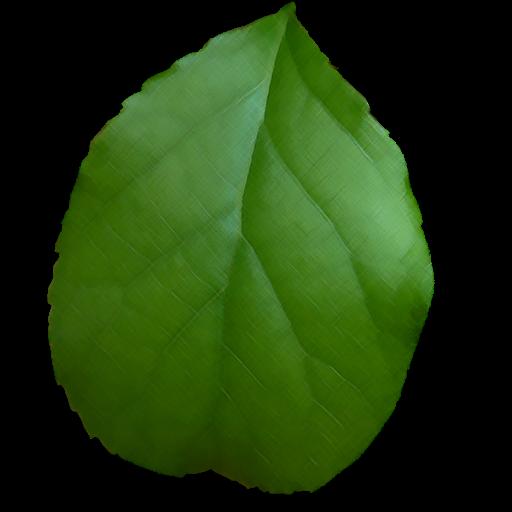 Percent Cover Practice 教育 App LOGO-APP試玩