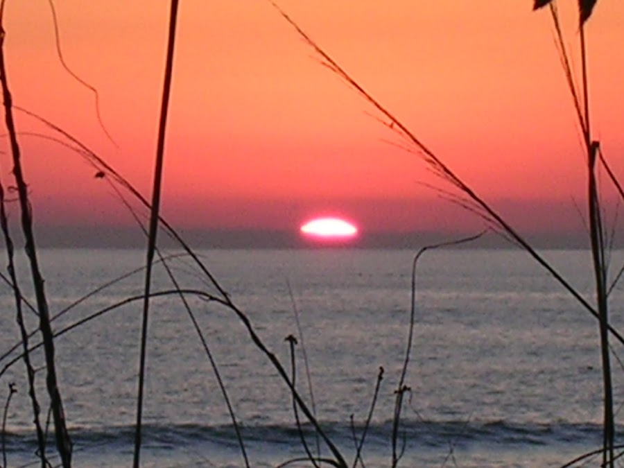 Panama city beach by Pat Cummings - Landscapes Sunsets & Sunrises ( water, sand, orange, sunset, beach,  )