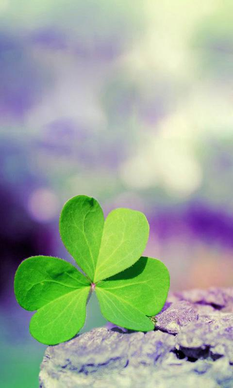 Shamrock Live Wallpaper - screenshot