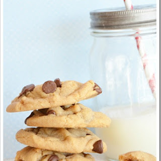 Peanut Butter Chocolate Chip Cookie.