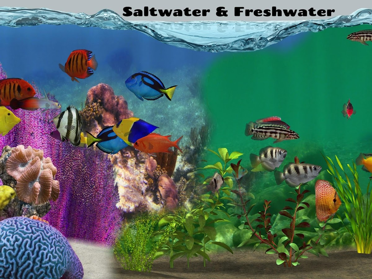 fish farm 2 android apps on google play