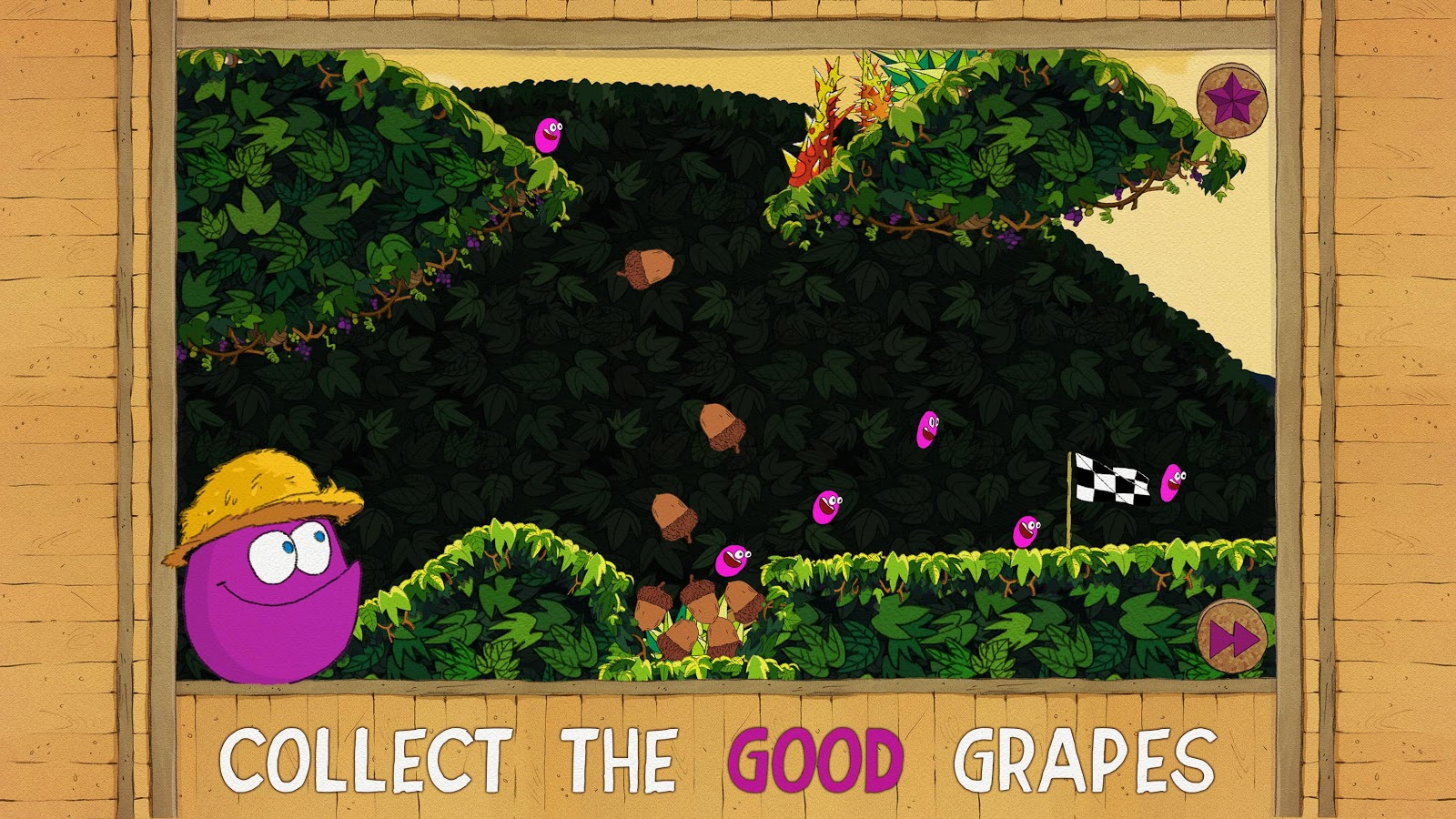 Grapes Issue- screenshot