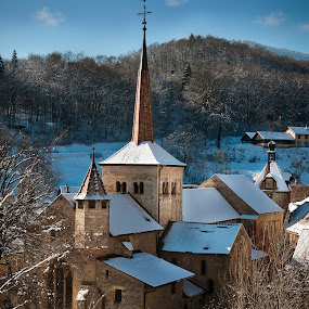 Abbatiale Romainmôtier  by Christian Diboky - Buildings & Architecture Places of Worship ( hill, site clunisien, vaud, church, winter, abbatiale, snow, romainmotier, d300, switzerland, nikon, cluny, abbey, , cold )