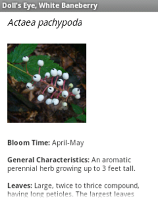 Native Plants of North Georgia- screenshot