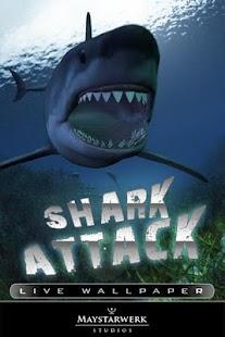 鯊魚攻擊現場壁紙