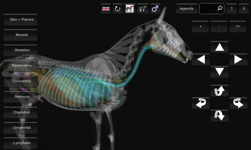 3d Horse Anatomy Software Android Apps On Google Play