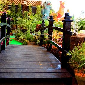 mini Bridge by Syed Rixvi - City,  Street & Park  City Parks ( park, plants )