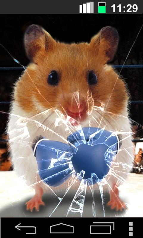 Funny Hamster Cracked Screen- screenshot