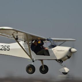 air transport  by Dorian Radu - Transportation Airplanes ( air, transport,  )