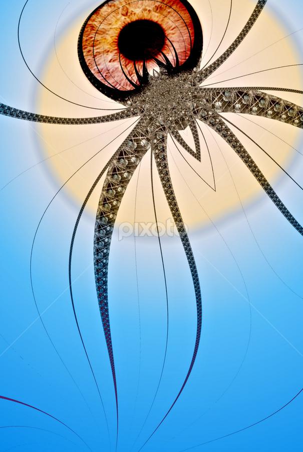 Fractal Spider by Simon Eastop - Digital Art Animals ( abstract, spider, fractal )