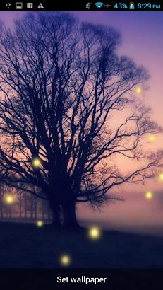 Fireflies Live Wallpaper 2015- screenshot thumbnail