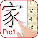 Learn Chinese Mandarin Full icon