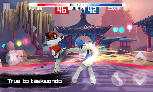 Taekwondo Game Screenshot 5