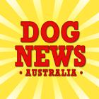 Dog News Australia icon