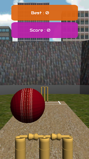 Bowled - Cricket Game
