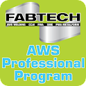 AWS Professional Program